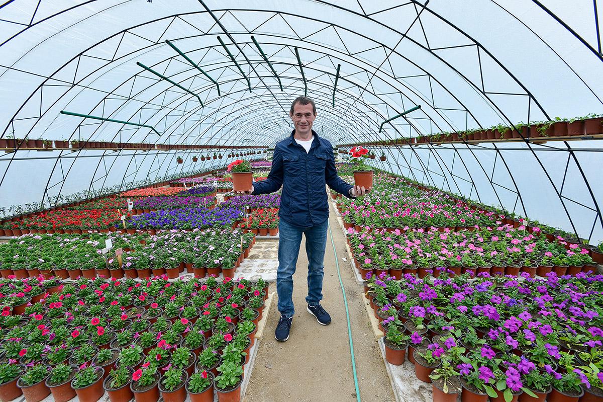 стоит обратить выращивание цветов круглый год в открытом грунте термобелье