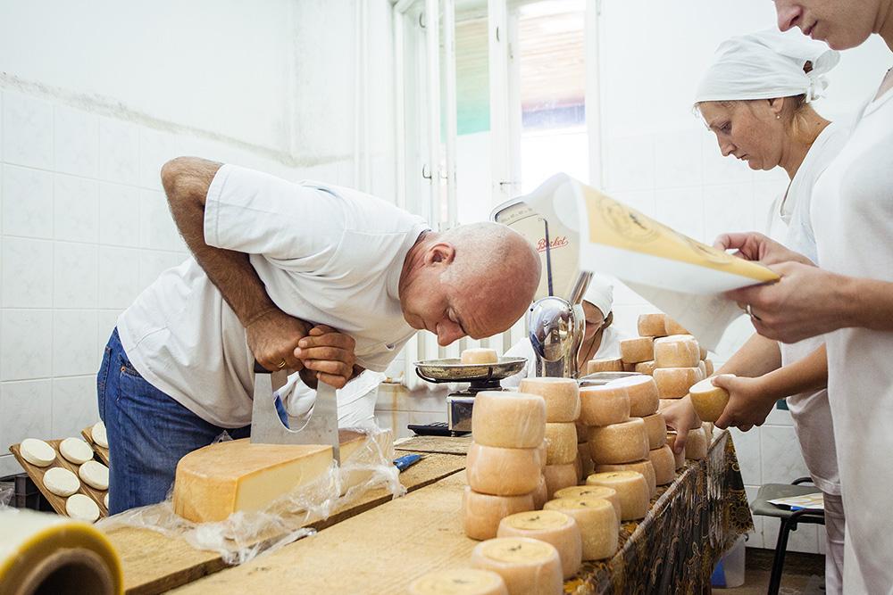 Как организовать сыроварню дома
